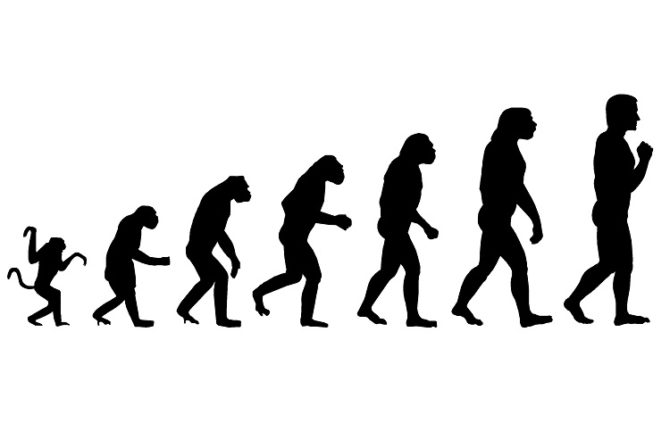 Human Resources and The Evolution of the Employee
