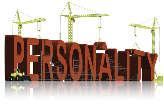 Can you Predict Which Personality Traits are Critical to Sales Success in your Organisation?