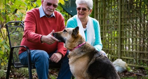 Homesitters Launches New Year Recruitment Campaign to Expand its Team of Home and Pet Sitters